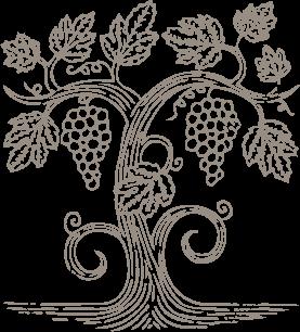 Partez à la découverte des plus grands vins d'Alsace sous forme de parcours dégustation (Winetasting) ludiques et personnalisés, à Colmar !